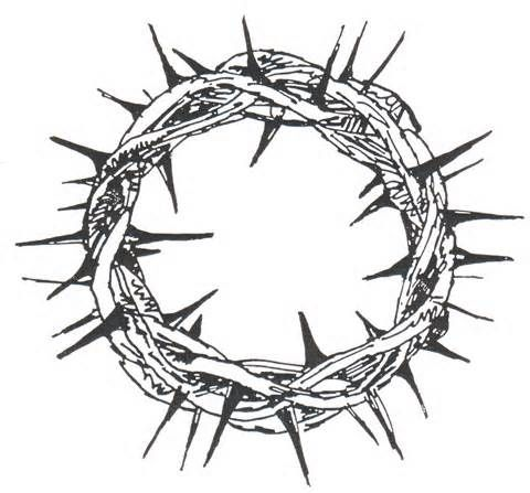 50 best thorns images on pinterest crown of thorns euphorbia rh pinterest com Jesus Crown of Thorns Crown of Thorns Vector