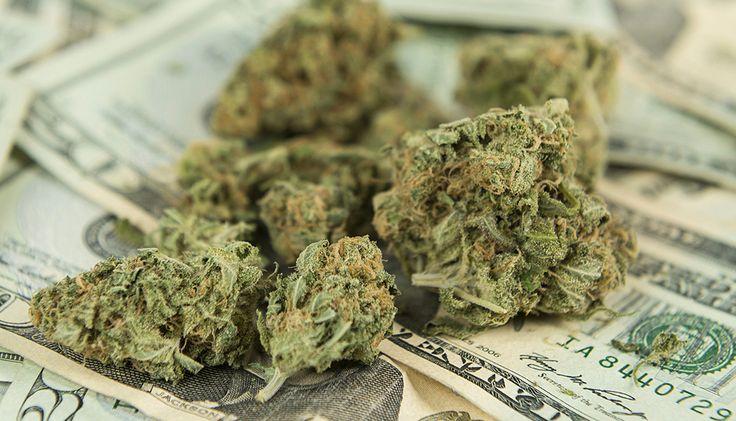 Washington recebe US$ 65 milhões em impostos no primeiro ano de legalização da maconha