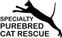 Purebred Cat Rescue