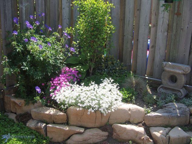 bassa manutenzione giardinaggio parte 2 roccia giardino, giardinaggio, come a, paesaggio, vita all'aria aperta, piante grasse