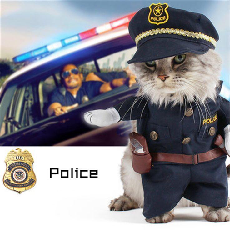Pet Clothes Cat Funny Cat Costume Cat Dress Clothing Cat Malchivov Interesting Dog Clothing Funny Pet Costumes DDMX994