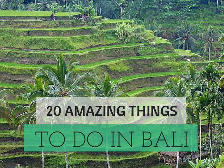 20 amazing things to do in Bali- including biking around rice fields, visit coffee farms, walk through monkey forest, visit a turtle breeding sanctuary and climbing mt batur!