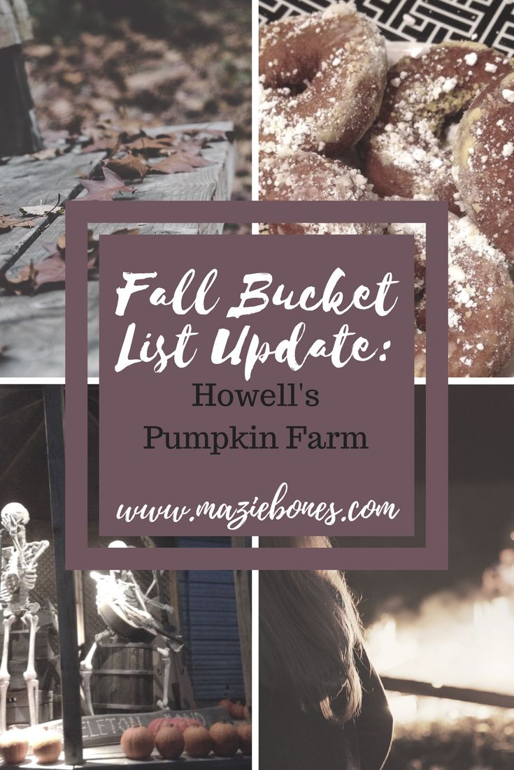 A couple weeks ago Andrea and I crossed another activity off of our Fall Bucket List. We finally went to Howell's Pumpkin farm! For those of you not in the Niagara region, Howell's is a beautiful family own activity farm, that opens up every fall for some super spooky halloweenfun! There are animals, wagon …