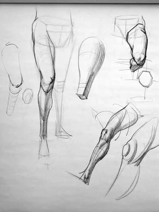 Pin by Giovanni GBS on Dessin corps | Pinterest | Anatomy, Drawings ...