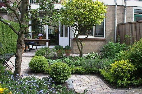 Bomen stadstuin google zoeken tuin pinterest for Huis in tuin voor ouders