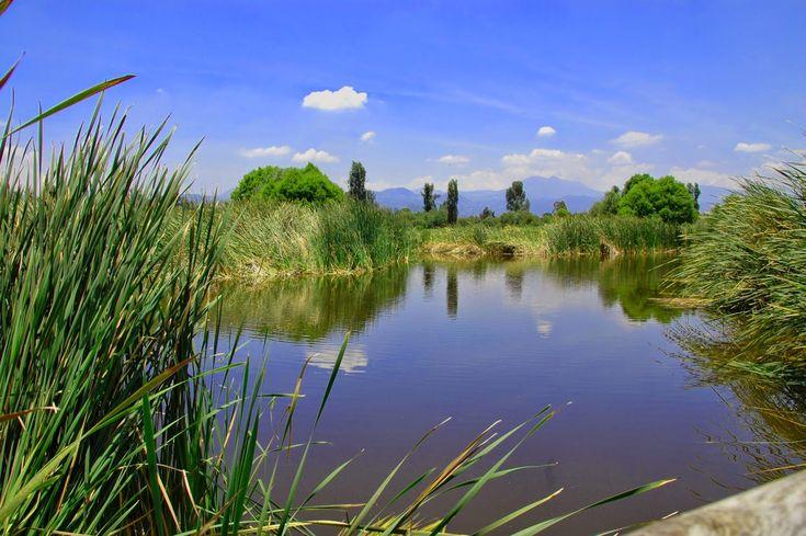 Vivencias: Parque Ecológico Xochimilco