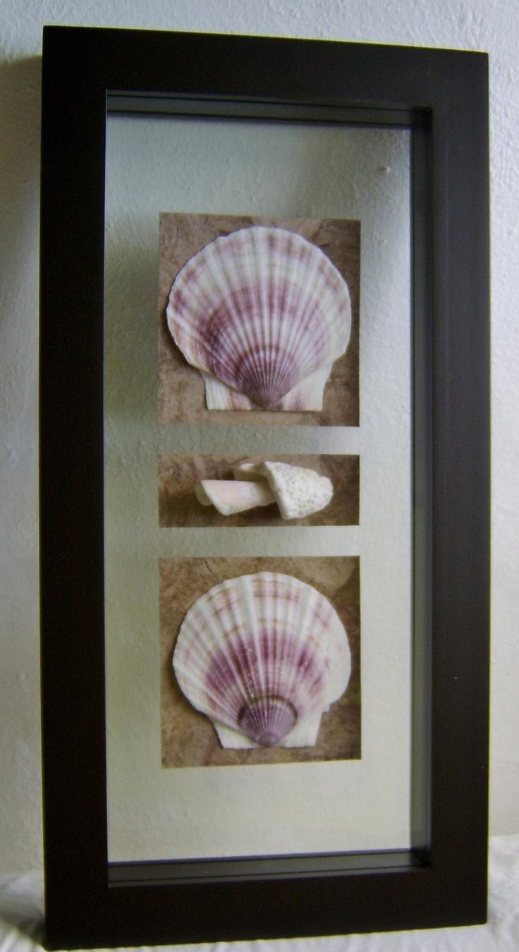Cuadro con marco de madera doble vidrio y cosas de mar - Vidrio plastico para cuadros ...