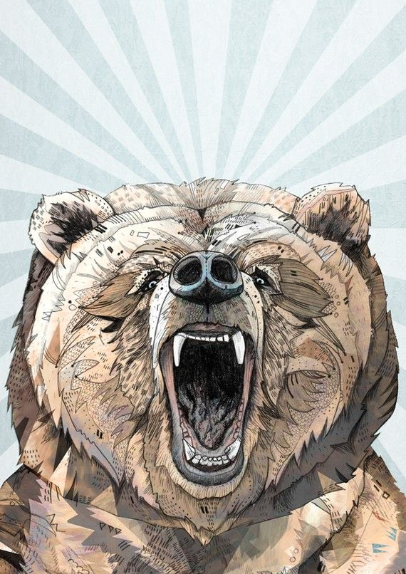 Grizzly // A5 print by SandraDieckmann on Etsy, £7.00