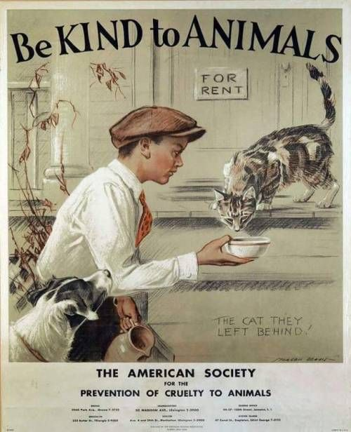 """Be kind to animals"""
