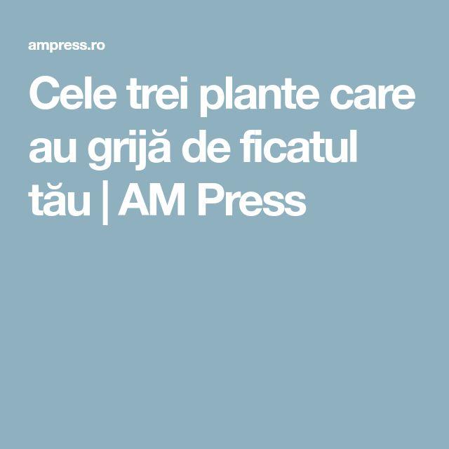 Cele trei plante care au grijă de ficatul tău | AM Press