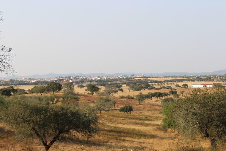 Vila Nova de S. Bento ao fundo (Tirada perto da Barragem da Vareta)