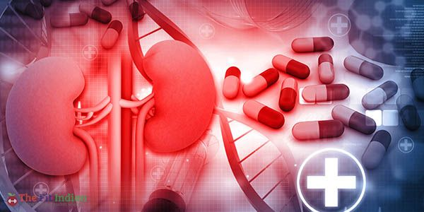 Everything about Kidney Failure - Signs, Symptoms, Causes and Prevention