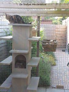 katten krabpaal van  stijgerhout