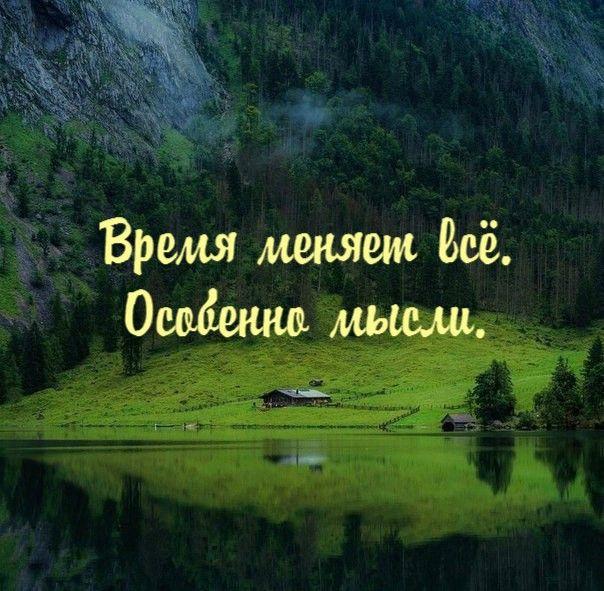 #АлександрЖданович #мотивация #КриминальныйИнфобиз #мотивационныекартинки