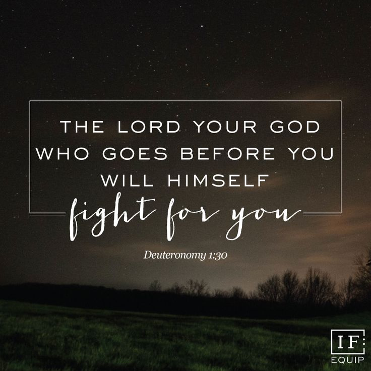 The Lord your God who goes before you will Himself fight for you  Deut 1:30 #onlinebiblestudy