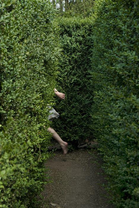 (via Thomas Gearty   Italy   Garden Maze, Villa Barbarigo, Valsanzibio, Italy, 2007)