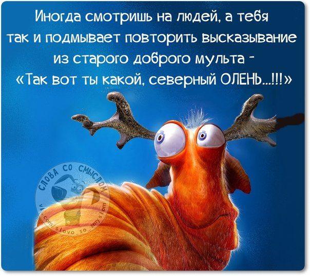 Прикольные фразочки в картинках (25 фразочек) » RadioNetPlus.ru развлекательный портал