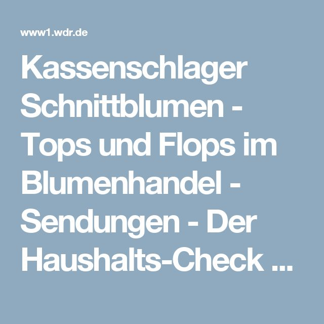 Kassenschlager Schnittblumen - Tops und Flops im Blumenhandel - Sendungen - Der Haushalts-Check - Fernsehen - WDR