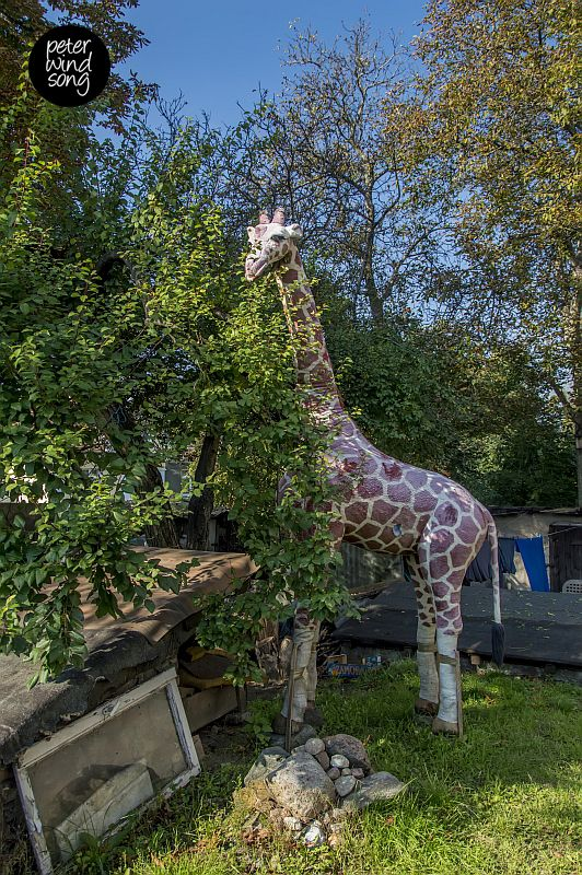 A plush giraffe standing in one of Poznań's lesser known neighborhoods, Główna.
