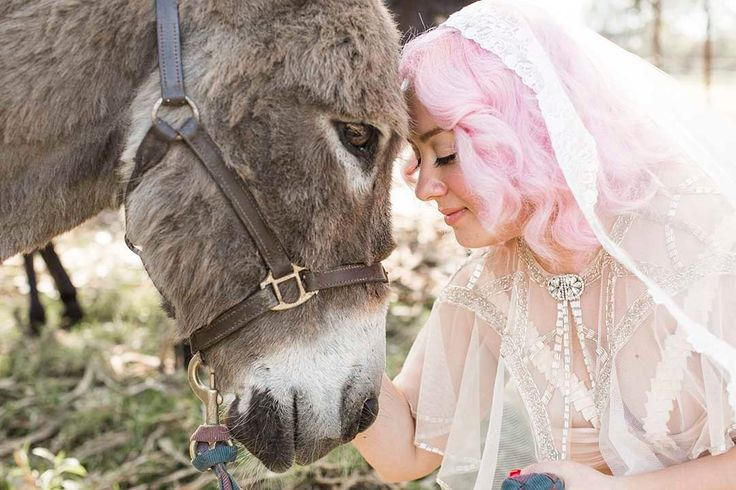 Mexican themed wedding, with a donkey! Shot by Butterfly Bones Photography