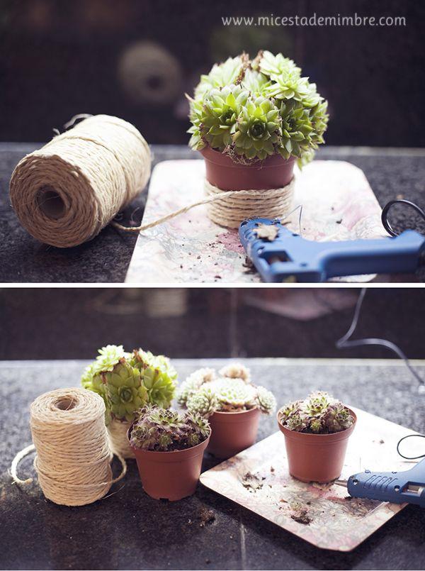 Mi cesta de mimbre: DIY: Macetero forrado de cuerda.
