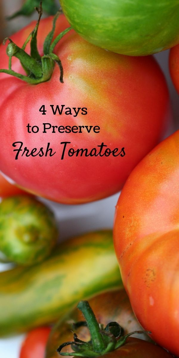 Four Ways to Preserve Tomatoes for Yummy Recipes All Year Long