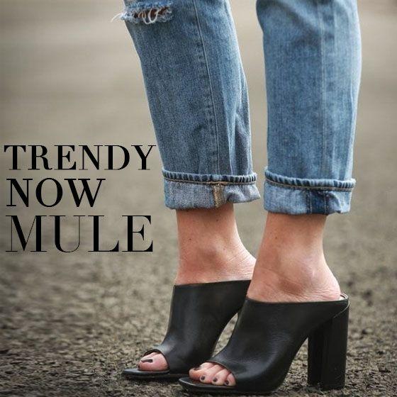 Tendência de sapatos, mule
