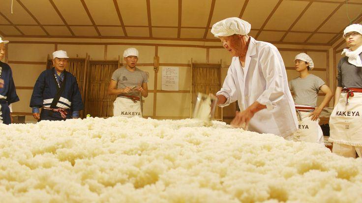 五百万石100%使用。日本酒発祥の地とも言われる島根県の蔵元「竹下本店」で醸されました。酒米の一部から自分たちで手植えしたこだわりのお酒です。全量槽絞り、-5℃瓶貯蔵。島根では珍しい元南部杜氏を指導者として迎え、南部流のキレと、島根の美味しい空気・水が見事に調和された幾層にも広がりの見せる味わい深いお酒となりました。<取扱|竹下本店>