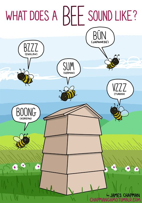 WHAT DOES A BEE SOUND LIKE? I can't imagine listening to a bee and hearing the sound BOONG.I can't imagine listening to anything ever and hearing the sound BOONG. As far as I'm concerned, boong is not a sound.