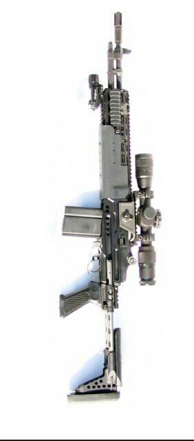 Springfield M1A with EBR stock