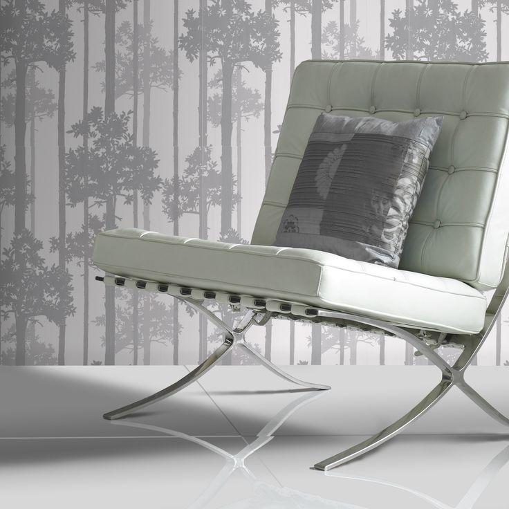 Silver, sleek and stylish #forest #silver #shadows