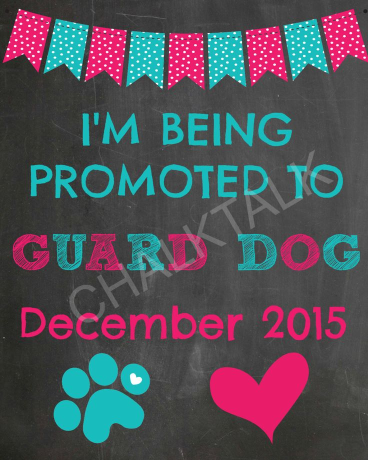 Dog Pregnancy Announcement Chalkboard - Printable - Photo Prop - Guard Dog by ChalkTalkDesigns on Etsy https://www.etsy.com/listing/229737718/dog-pregnancy-announcement-chalkboard