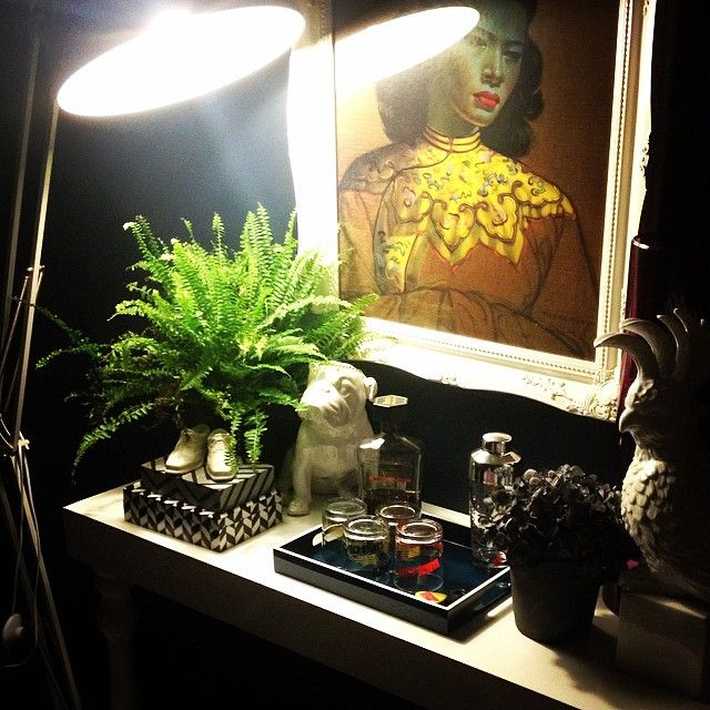 lighting, plant, trays. dark.