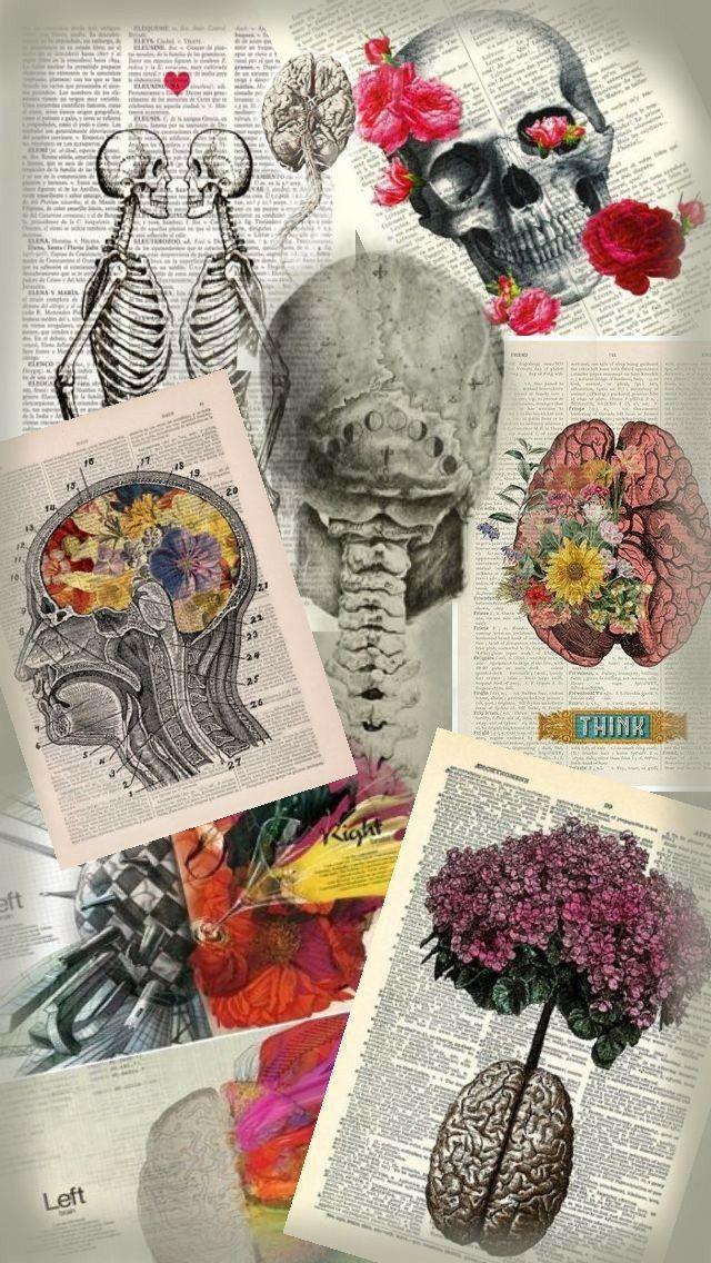 Pin By Hailey On Imagenes Bonitas In 2020 Medical Art Medical Wallpaper Art