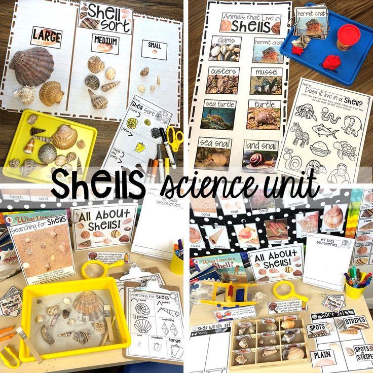Little Learners Science Curriculum – Preschool, Pre-K, and Kindergarten