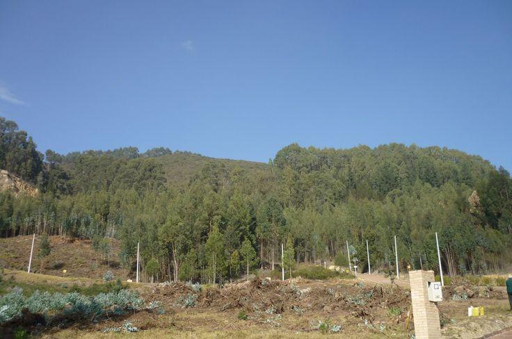 Vendo lote en Briceño - Cundinamarca  3.127m2 $406.510.000 Cel. 3144204021