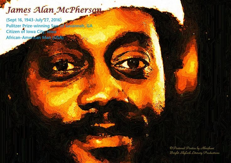 a literary analysis of umbilicus by james alan mcpherson Essays and criticism on james alan mcpherson - mcpherson, james alan.