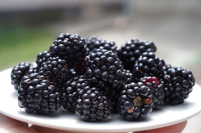 Ostružinový likér Některý rok je příroda tak štědrá, že už nevíte co s plody......pokud máte nadbytek ostružin, malin, moruší, černého rybízu,....můžete tento recept zkusit v několika obměnách. Ostružina je vynikající zdroj vitamínu C, B, karotenů, antioxidantů, fosforu, draslíku, železa, vápníku, horčíku. Ostružiny zpevňují cévy,působí na křečové žíly,chrání buňky před oxidací,regulují krevní tlak,zpomalují stárnutí a chřadnutí…