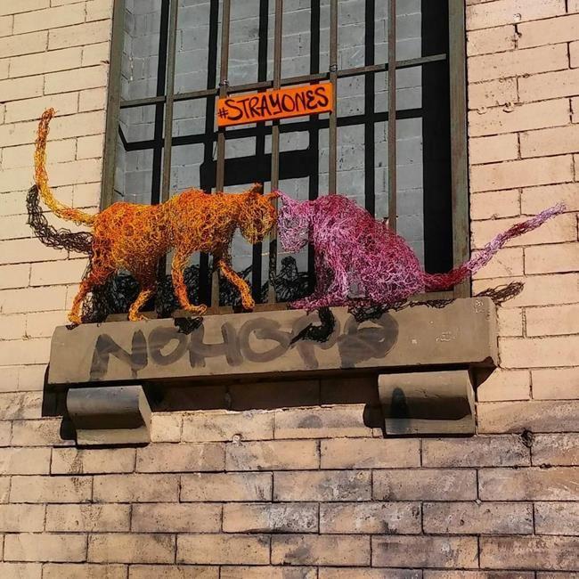 Kedi Sevdalısı Heykeltraş Strayones'tan Tel ile Tasarlanmış Kedi Heykelleri Sanatlı Bi Blog 20