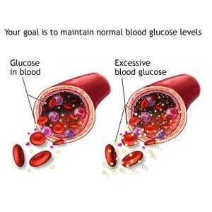 Effective Herbal Remedies For High Blood Sugar
