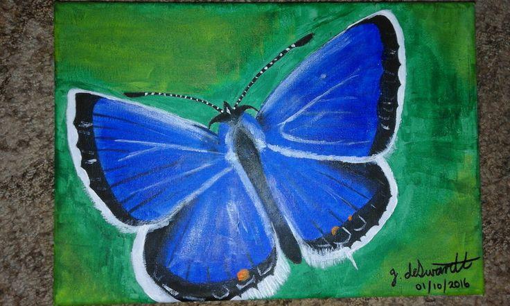 butterfly in acrylic paint