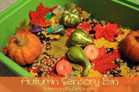 Autumn Theme Sensory Bin {Toddler Time}