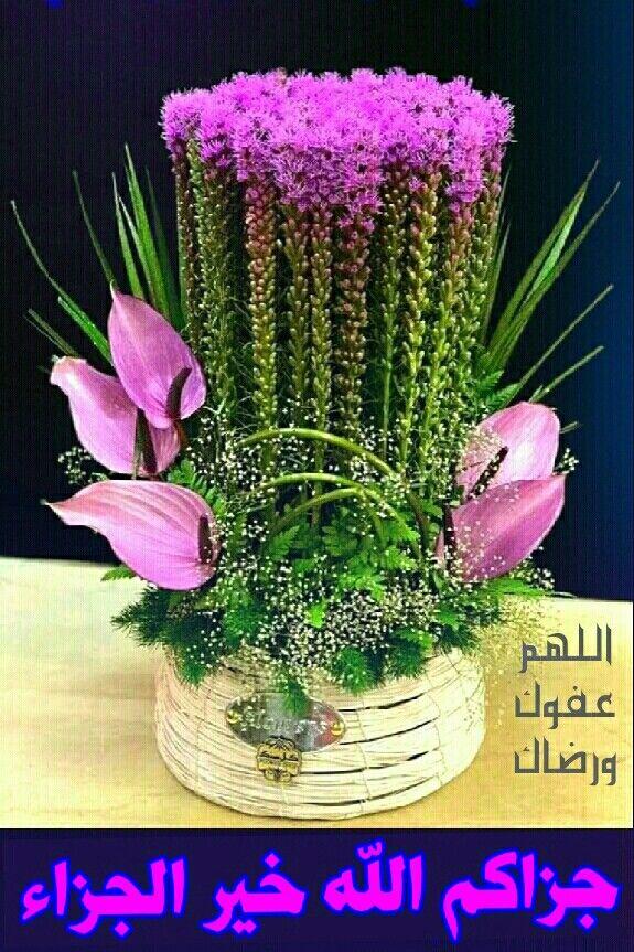 معنى جزاك الله خير ا الوفد