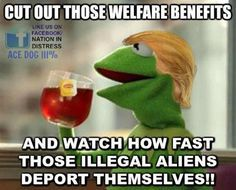 More stupidity. Illeagal aliens can NOT receive welfare or food stamps. They can receive schooling and emergency medical care, but that's it. It's estimated that they pay around $13 billion in taxes, little of which will be to their own benefit...but let's keep this crap going because people are too lazy to bother to figure out if the crap they're told is actually true.