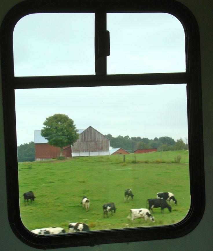Farm Tour In Berlin Ohio