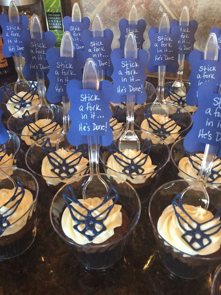 Chocolate cupcake with cream cheese frosting.  Chocolate Air Force Logo for retirement party