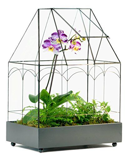 H Potter Wardian Case Glass Plant Terrarium Container 117... #wishlist