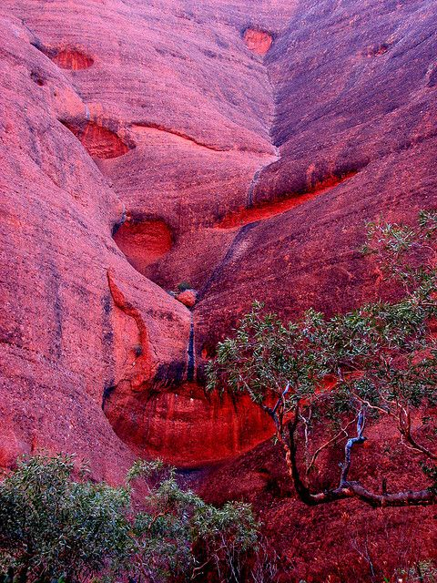 Sculptured Waterfall of Kata Tjuta . Australia