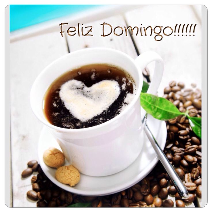 Feliz Domingo. - Página 12 84808ccafaae3742671cc08dca589a74