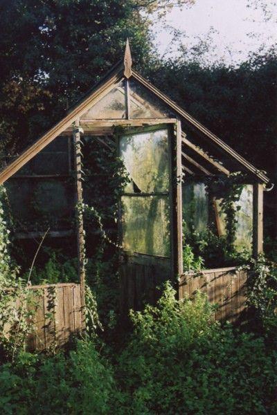 overgrown green houseSecret Gardens, Nature, Modern Gardens Design, Little Gardens, Greenhouses, Green House, Interiors Gardens, Glasses House, Dreams Gardens